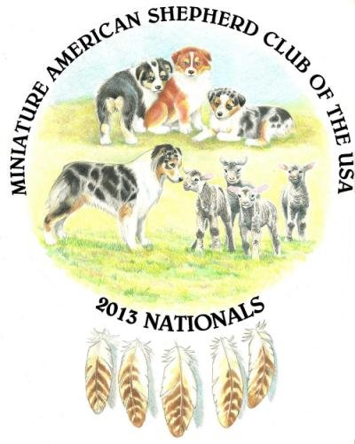 2013 Nationals Logo